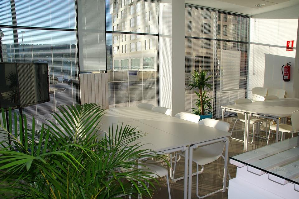 Planter er en vigtig del af kontoret dekoration